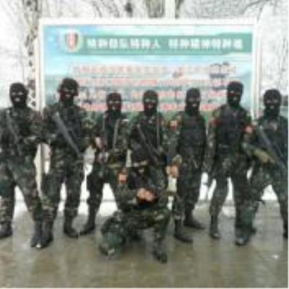 乌龙山剿匪
