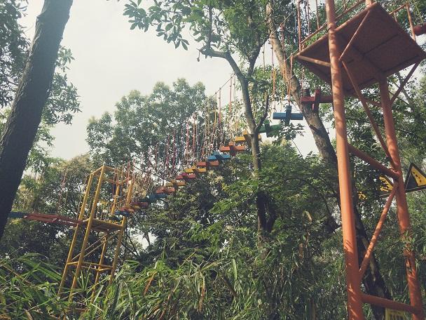 树上丛林穿越